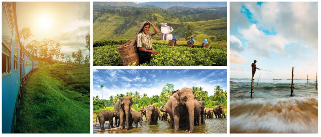 SRI-LANKA-1024x438 Programas Sri Lanka